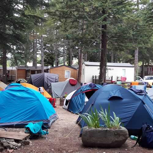 camping pas cher dans les pyr n es orientales camping la source